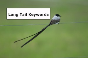 OBC Longtail Keyword Research